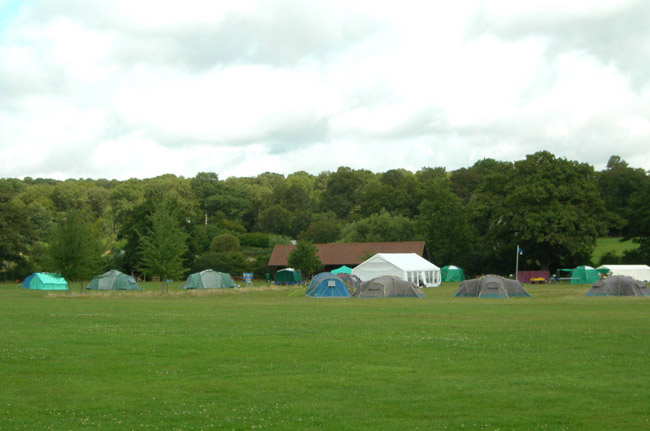 Willow Tree's Campsites