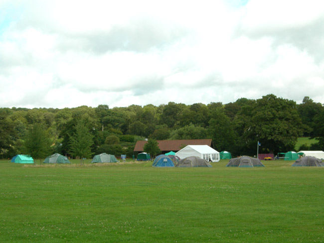willow tree campsite
